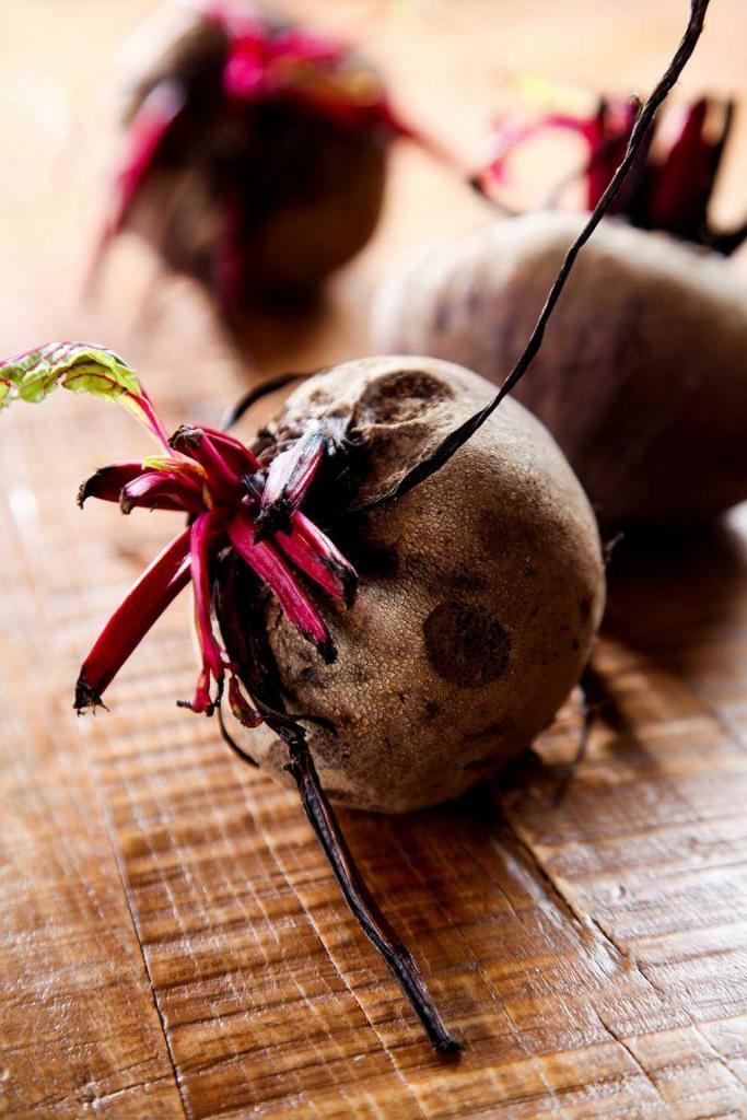 Zuckerrüben - vom Arme Leute Essen zu Bioqualität