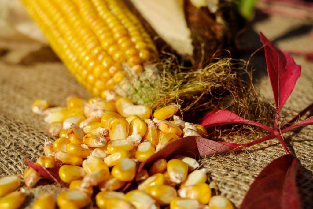 Hinter Speisestärke versteckt sich in der Regel Maisstärke